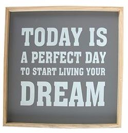 Today is the perfect day to start living your dream